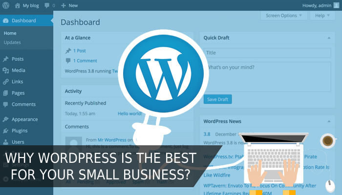 Gain WordPress Knowledge